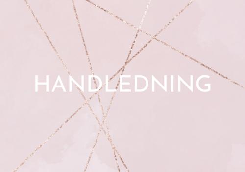 Handledning